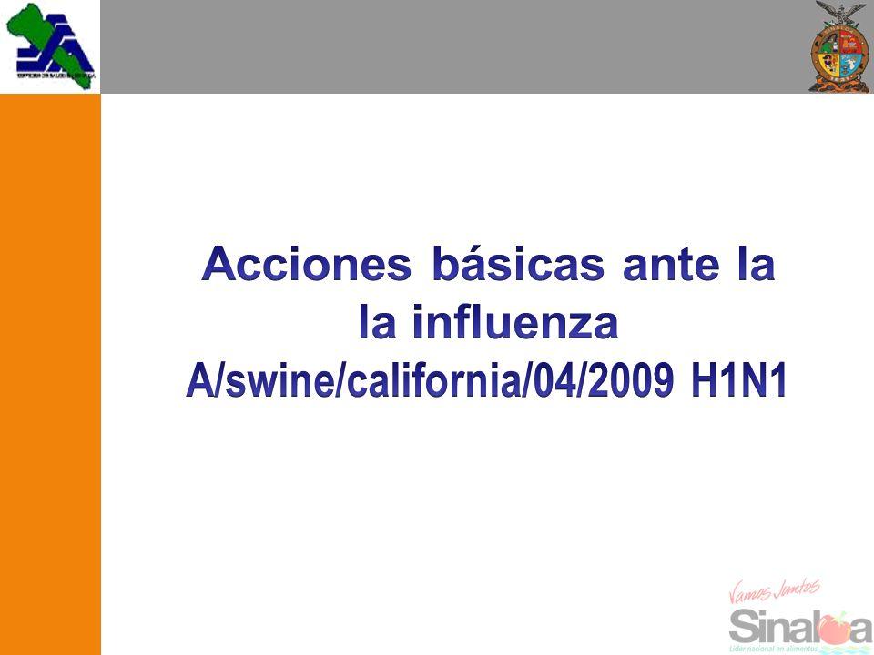 Acciones básicas ante la la influenza A/swine/california/04/2009 H1N1