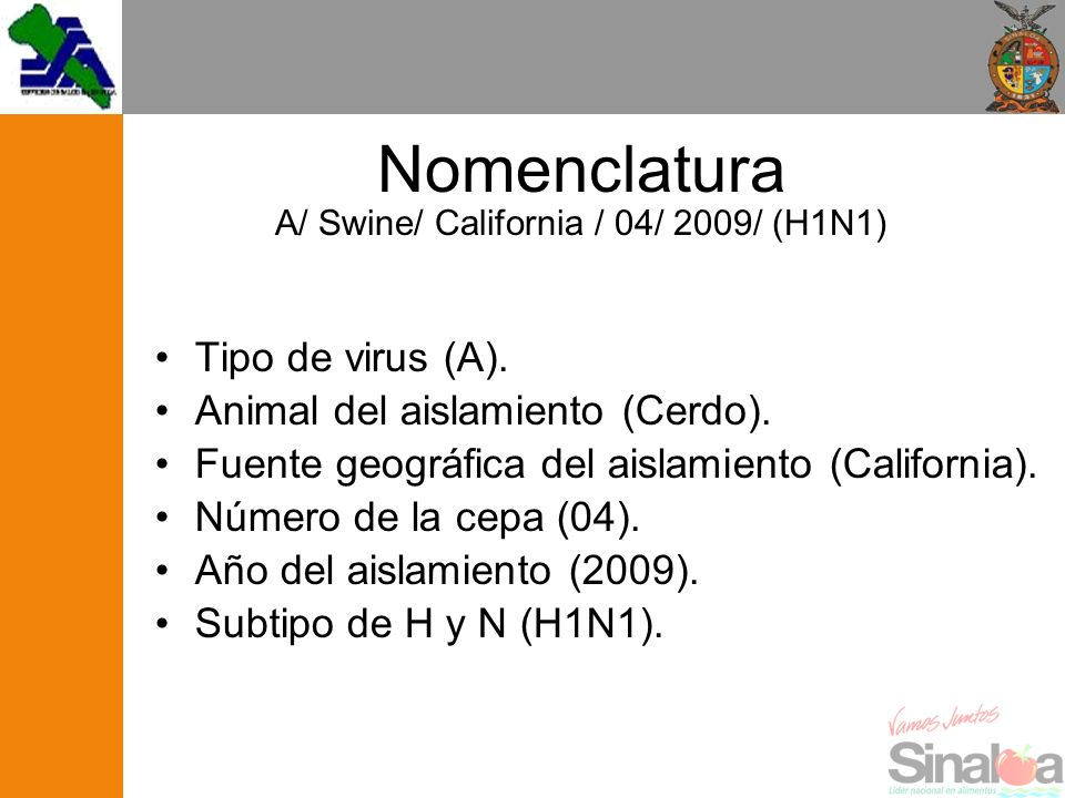 Nomenclatura A/ Swine/ California / 04/ 2009/ (H1N1)