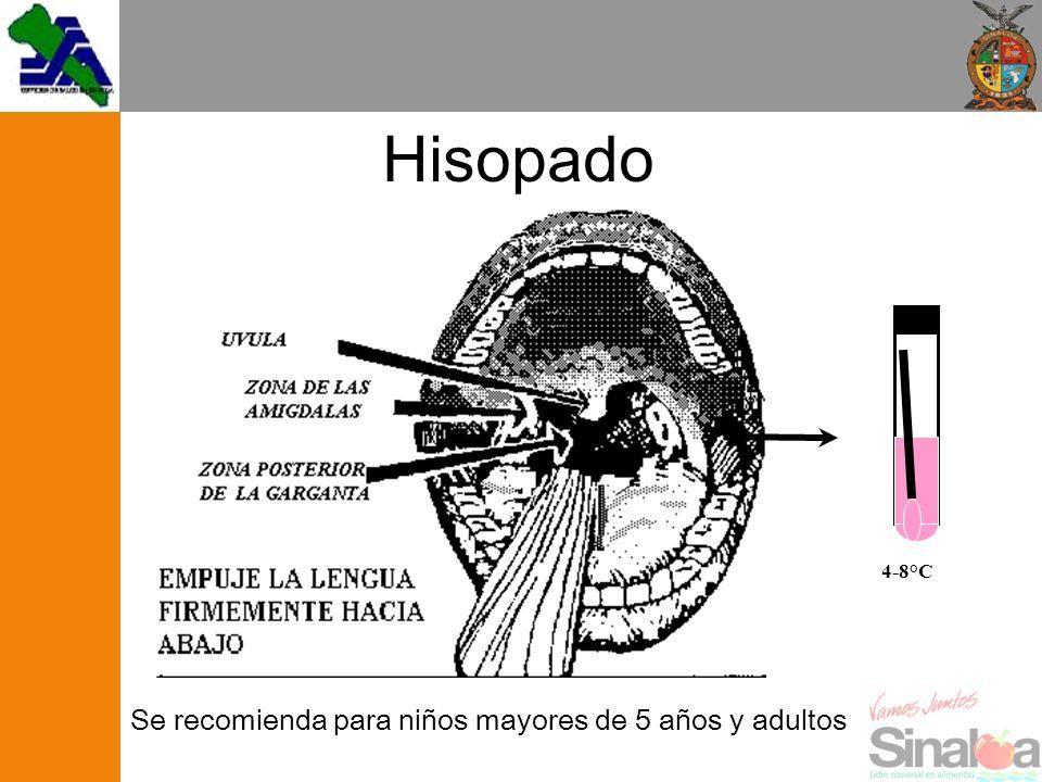 Hisopado 4-8°C Se recomienda para niños mayores de 5 años y adultos