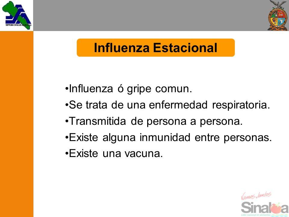 Influenza Estacional Influenza ó gripe comun.