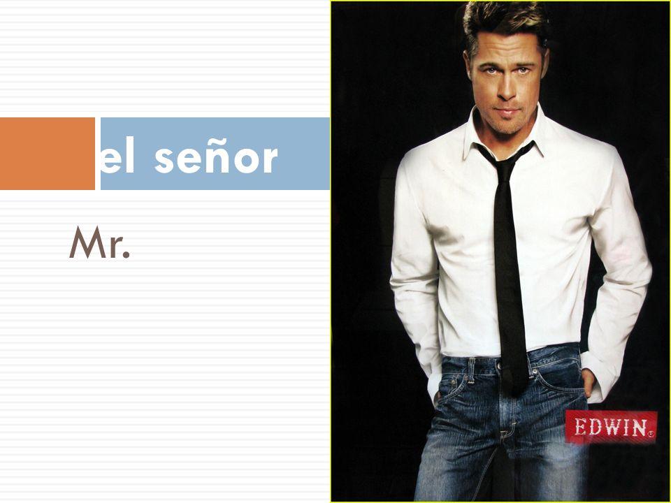 el señor Mr.