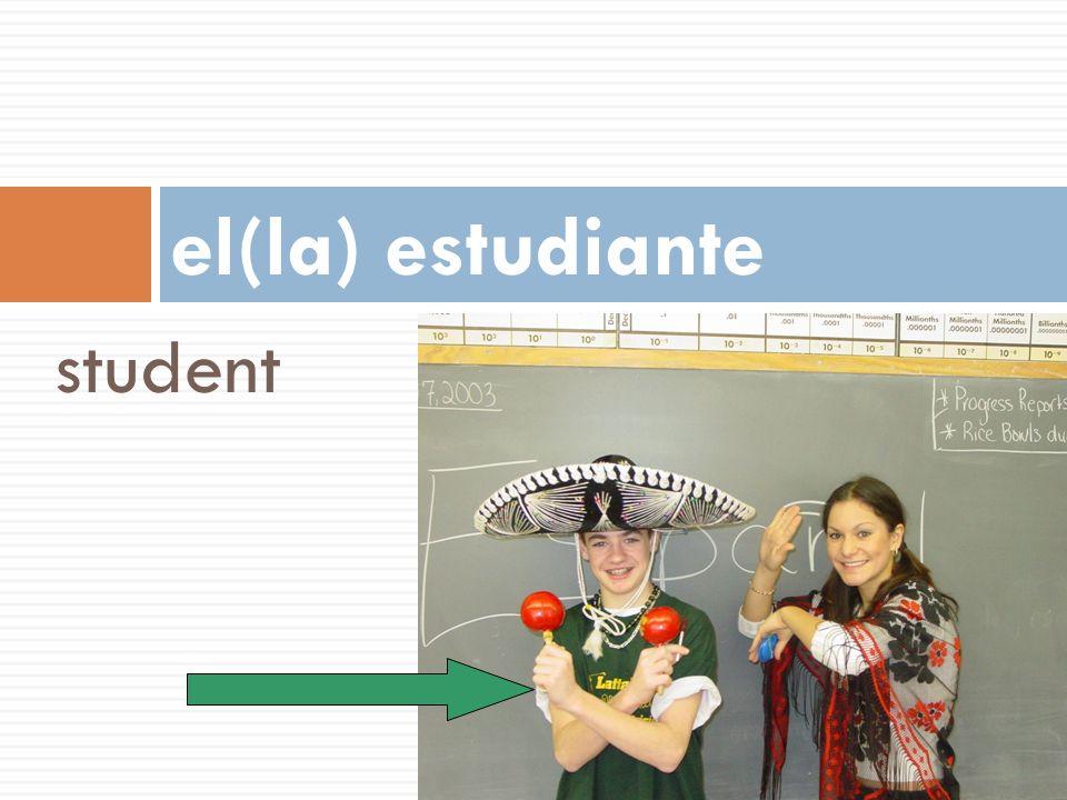 el(la) estudiante student