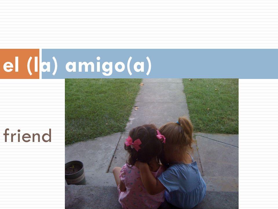 el (la) amigo(a) friend