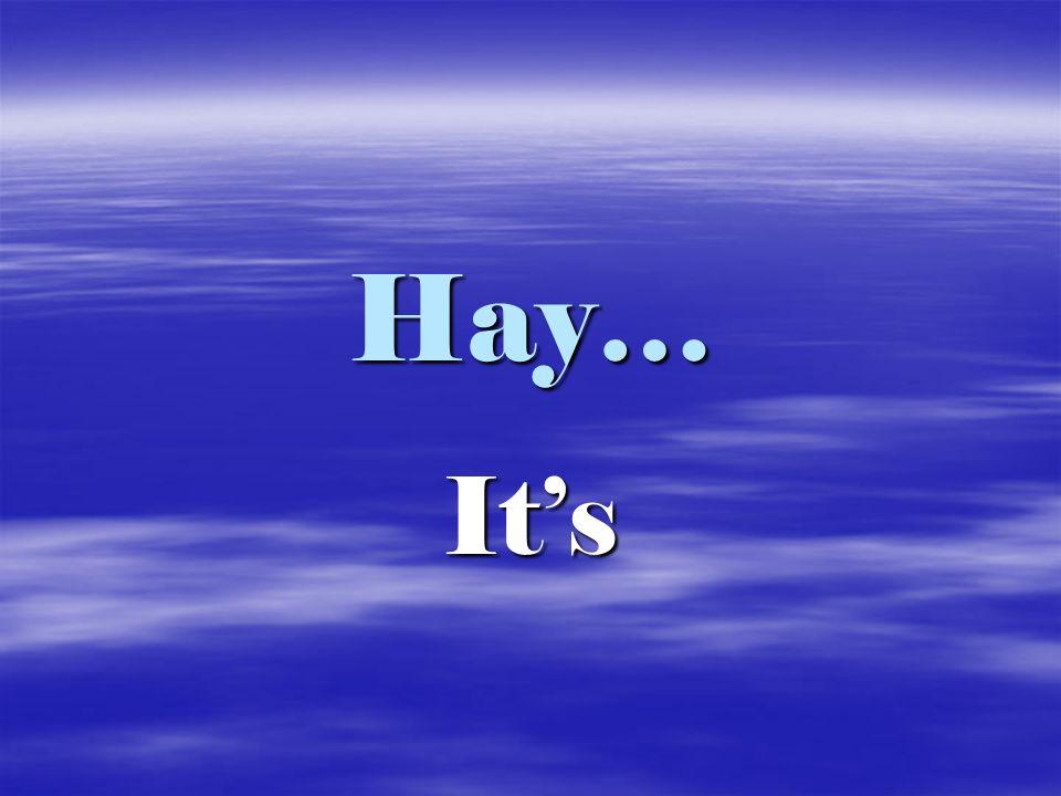 Hay… It's
