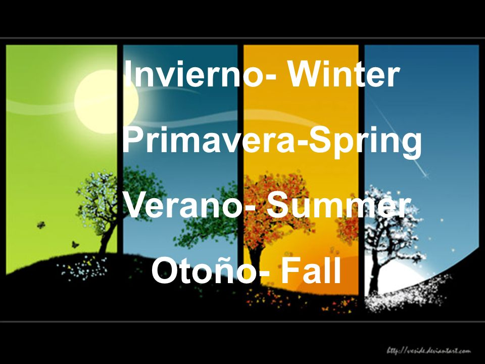 Invierno- Winter Primavera-Spring Verano- Summer Otoño- Fall