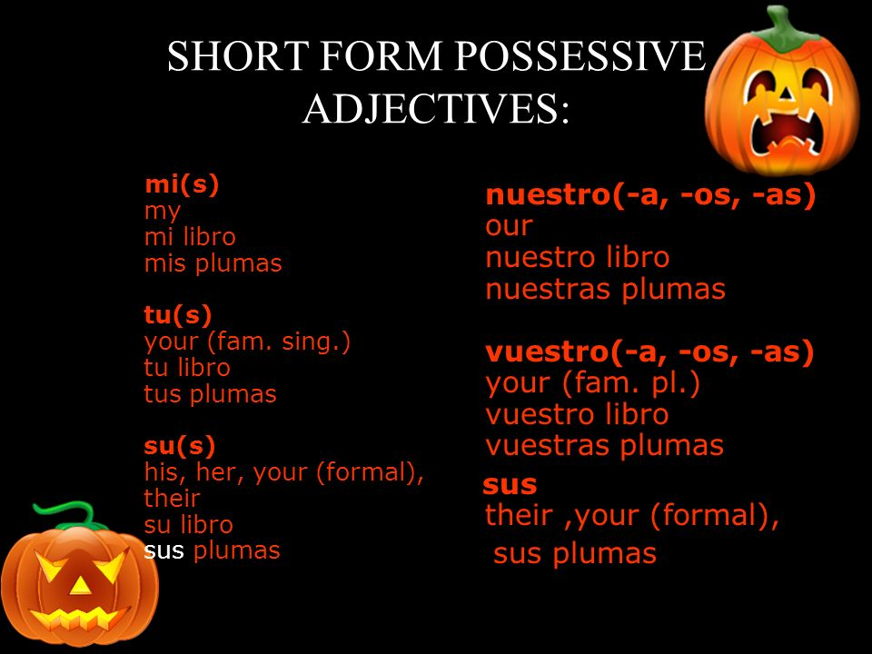 SHORT FORM POSSESSIVE ADJECTIVES: