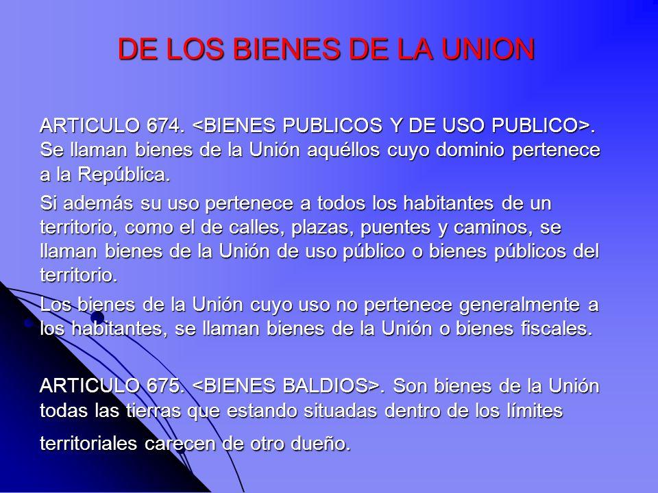 DE LOS BIENES DE LA UNION
