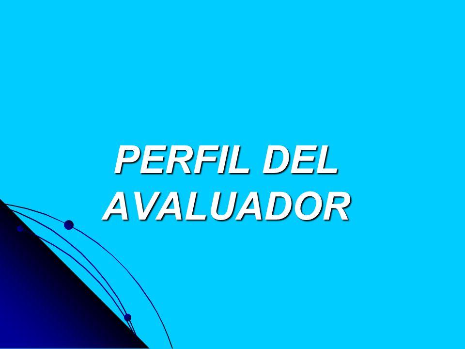 PERFIL DEL AVALUADOR