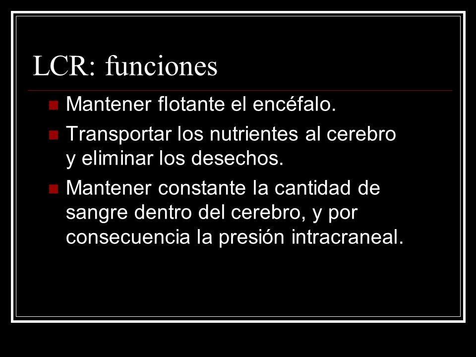 LCR: funciones Mantener flotante el encéfalo.