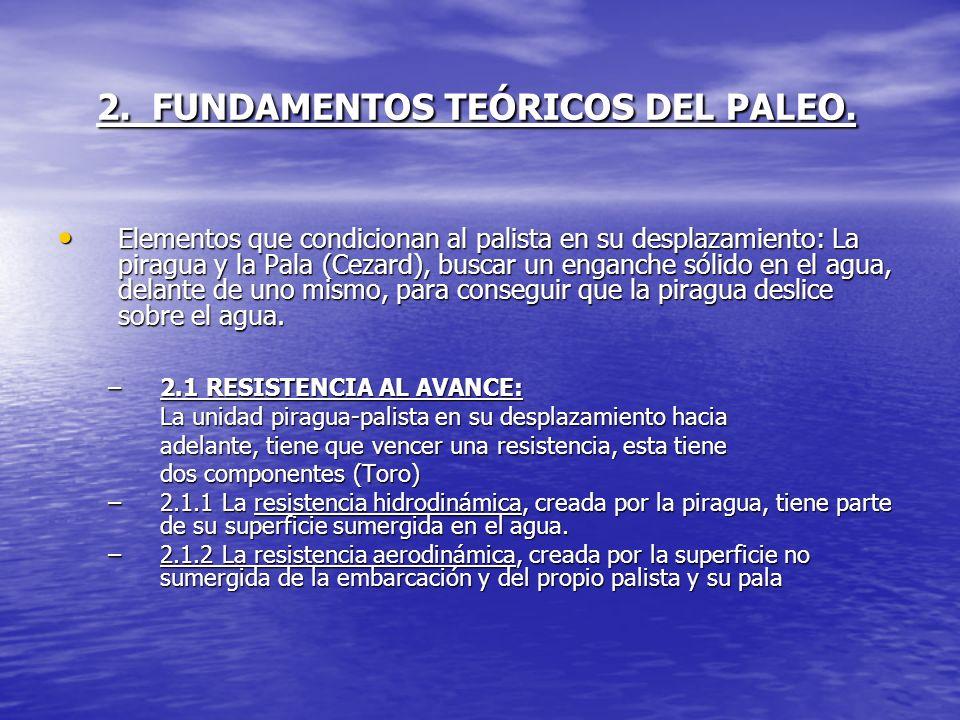 2. FUNDAMENTOS TEÓRICOS DEL PALEO.