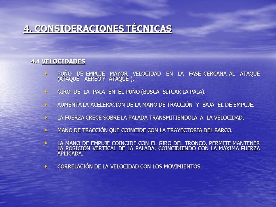 4. CONSIDERACIONES TÉCNICAS