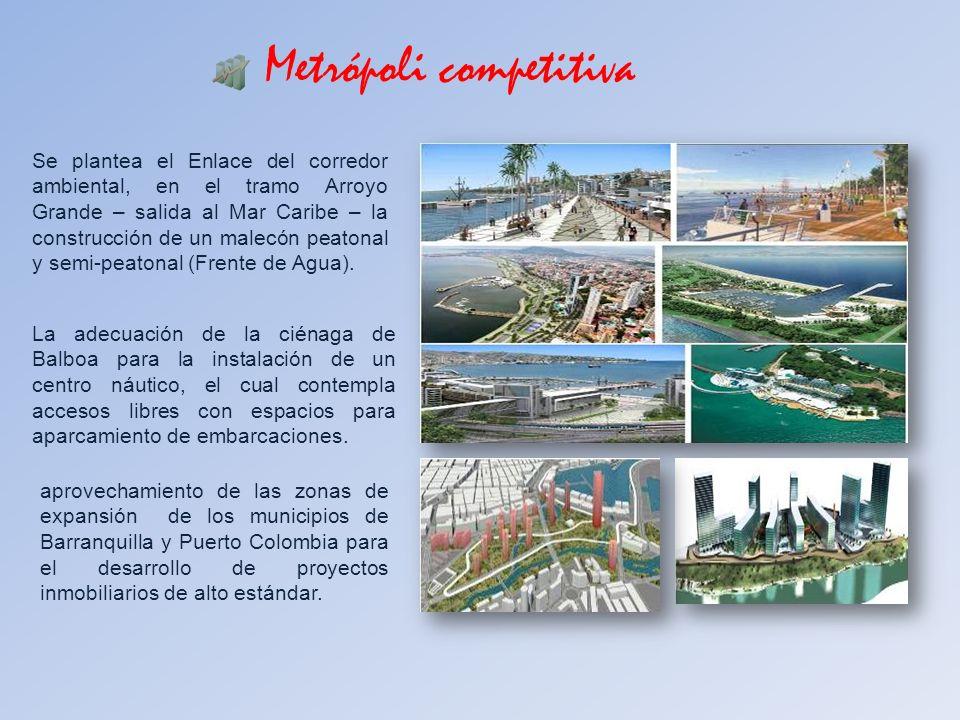 Metrópoli competitiva