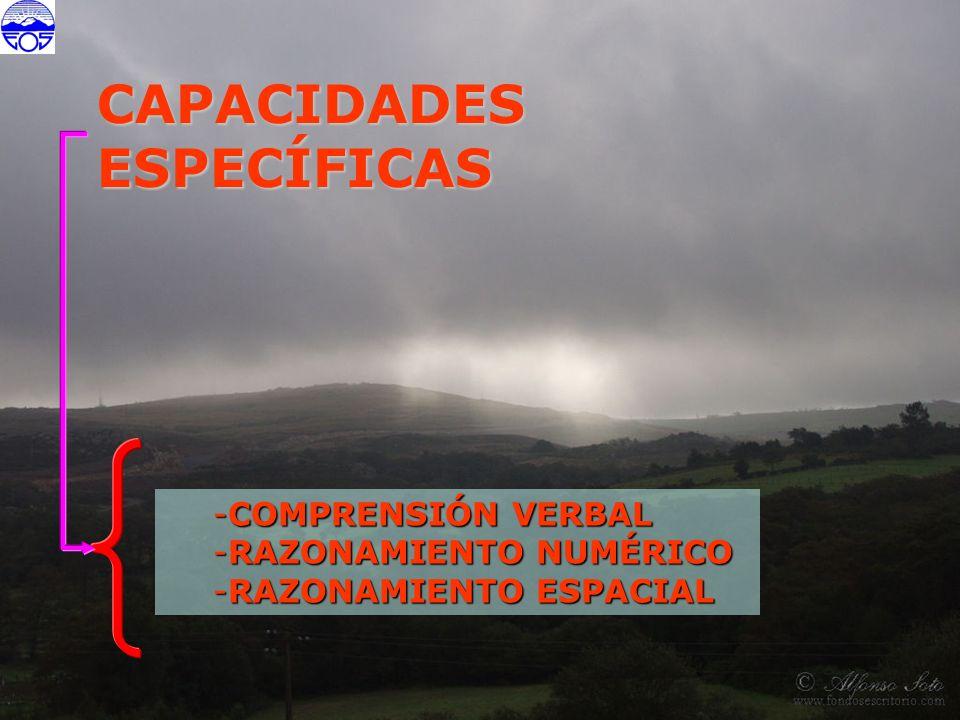 CAPACIDADES ESPECÍFICAS COMPRENSIÓN VERBAL RAZONAMIENTO NUMÉRICO
