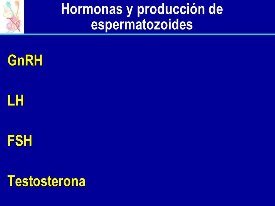 Hormonas y producción de espermatozoides