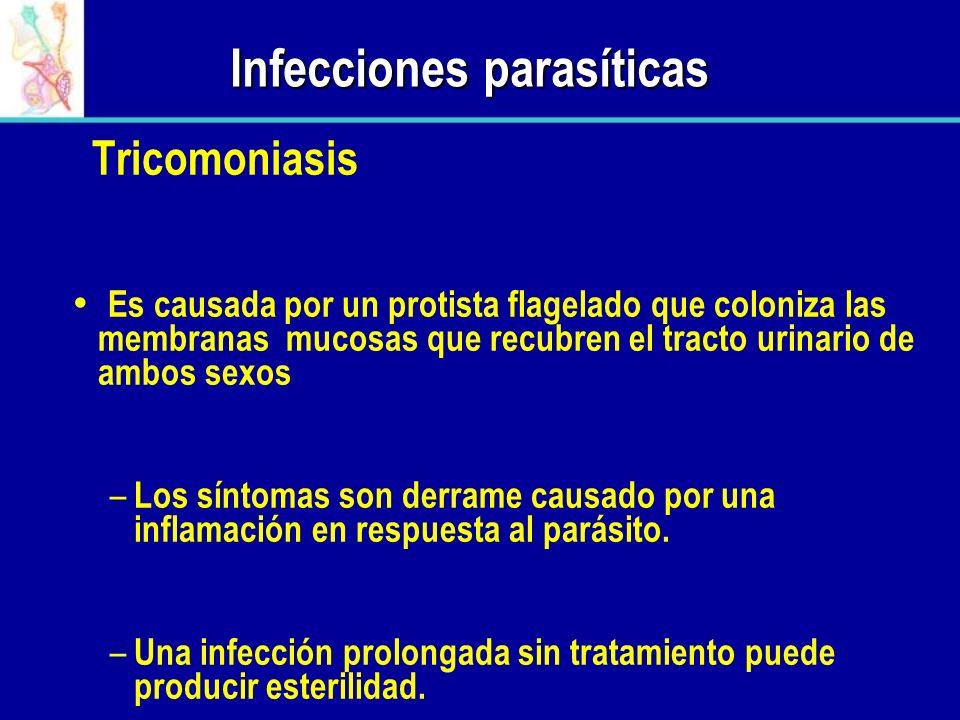 Infecciones parasíticas