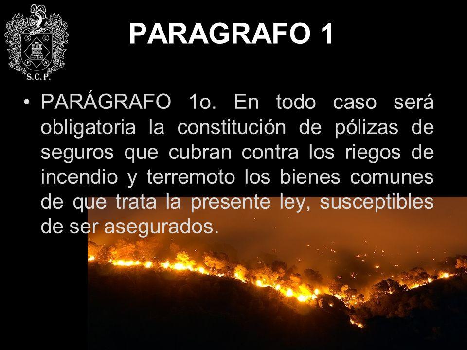 PARAGRAFO 1