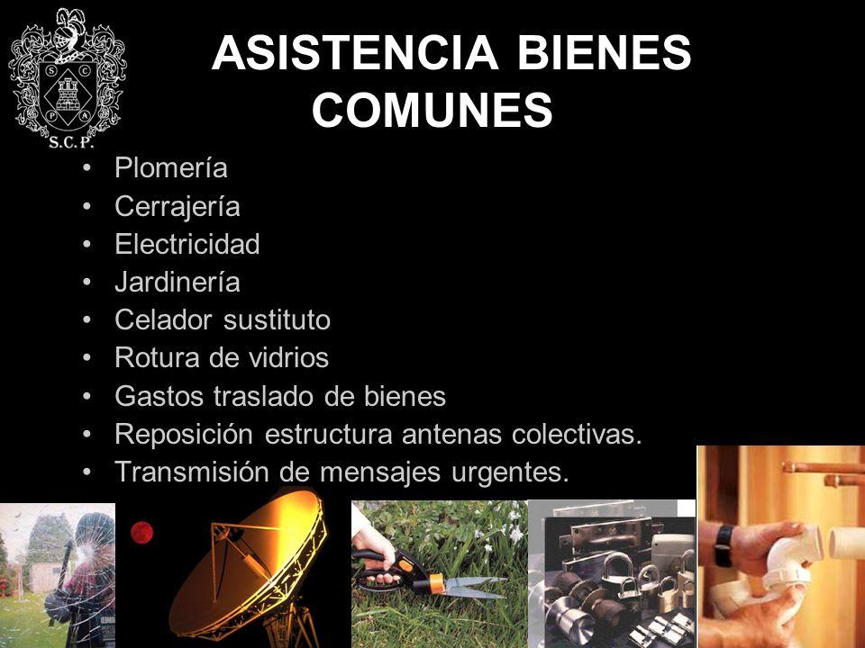 ASISTENCIA BIENES COMUNES