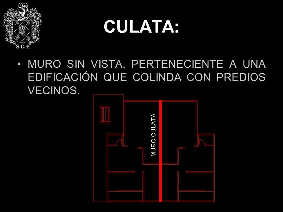 CULATA: MURO SIN VISTA, PERTENECIENTE A UNA EDIFICACIÓN QUE COLINDA CON PREDIOS VECINOS.