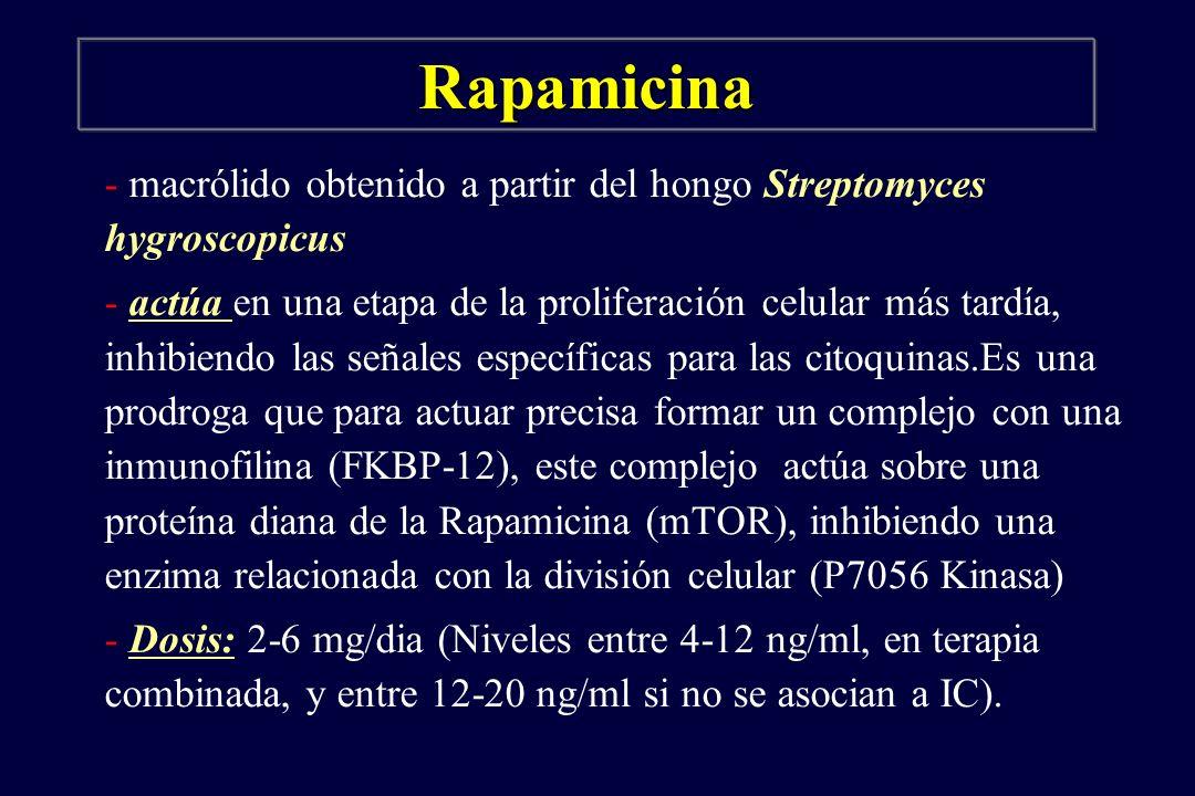 Rapamicina - macrólido obtenido a partir del hongo Streptomyces hygroscopicus.