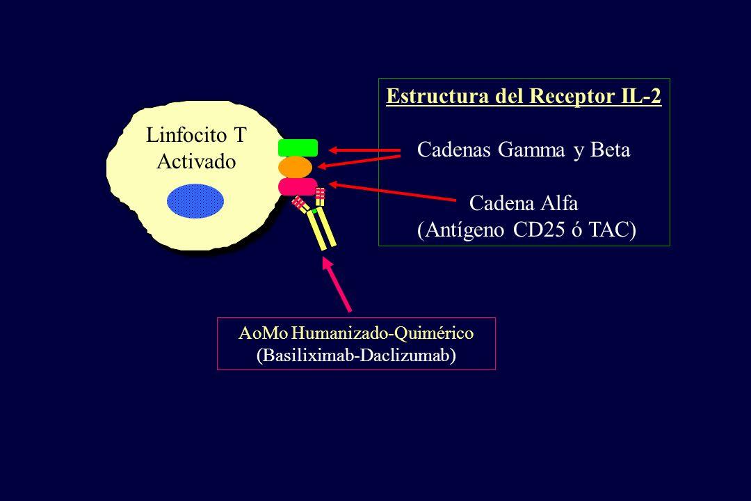 Estructura del Receptor IL-2 Cadenas Gamma y Beta Cadena Alfa
