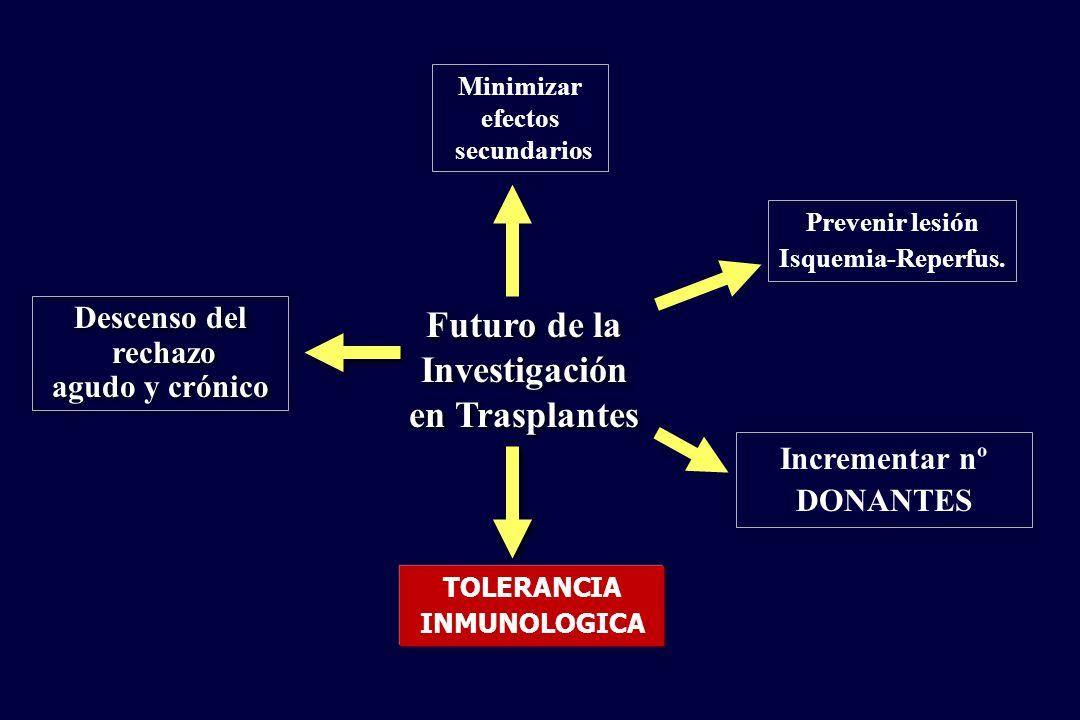 Futuro de la Investigación en Trasplantes