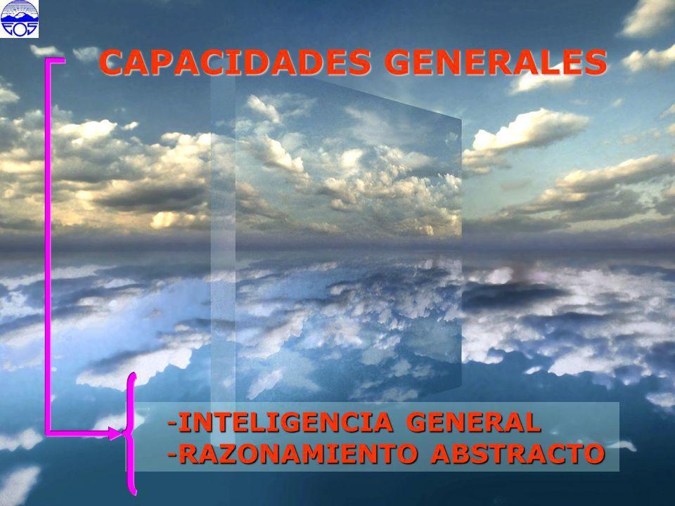 CAPACIDADES GENERALES