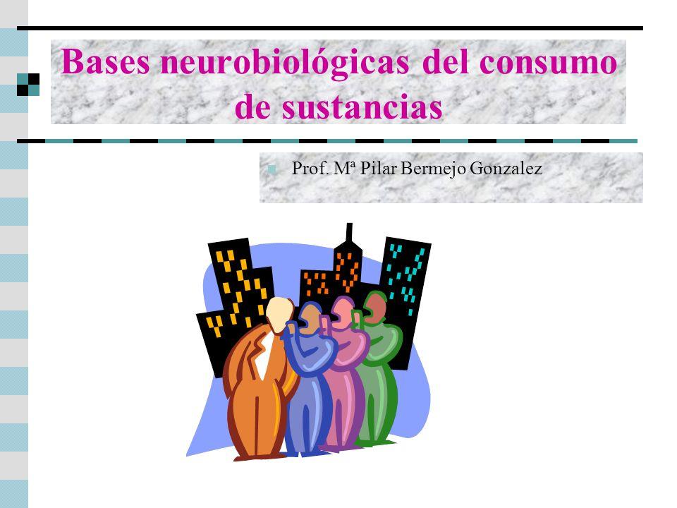 Bases neurobiológicas del consumo de sustancias