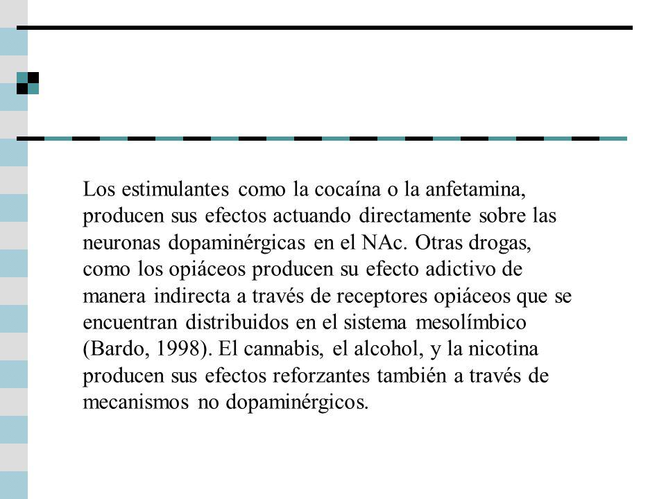 Los estimulantes como la cocaína o la anfetamina, producen sus efectos actuando directamente sobre las neuronas dopaminérgicas en el NAc.