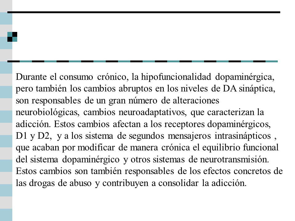 Durante el consumo crónico, la hipofuncionalidad dopaminérgica, pero también los cambios abruptos en los niveles de DA sináptica, son responsables de un gran número de alteraciones neurobiológicas, cambios neuroadaptativos, que caracterizan la adicción.