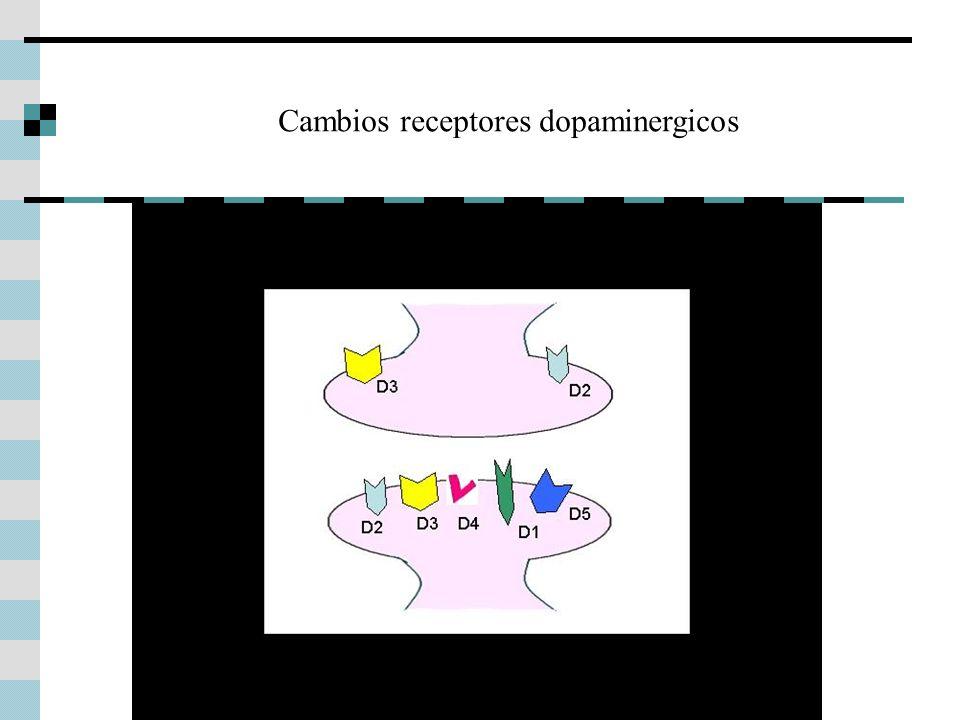 Cambios receptores dopaminergicos