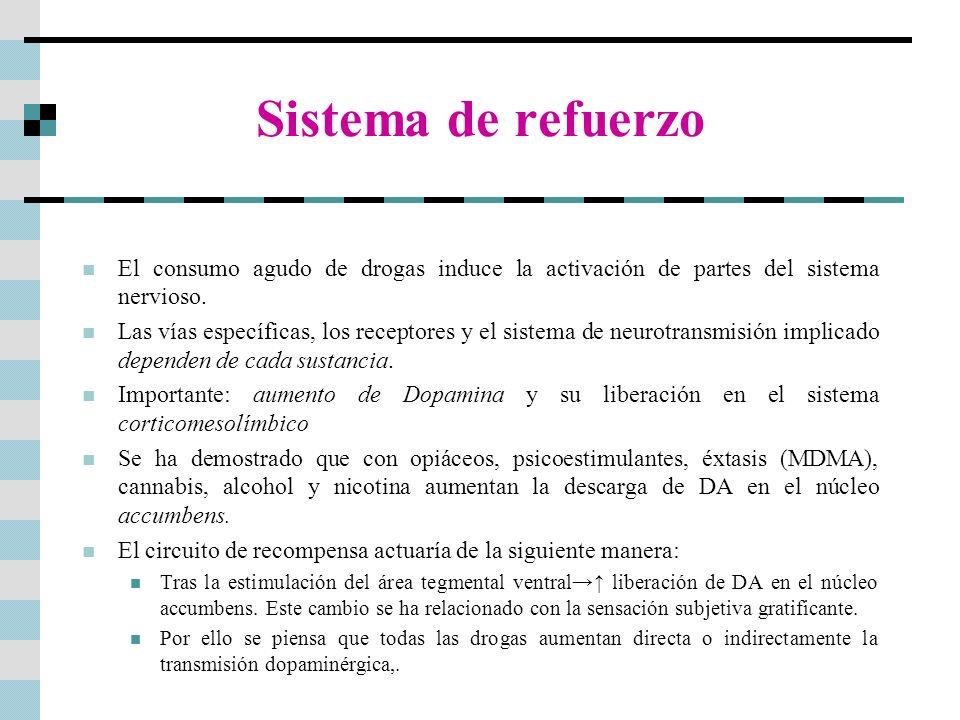 Sistema de refuerzoEl consumo agudo de drogas induce la activación de partes del sistema nervioso.