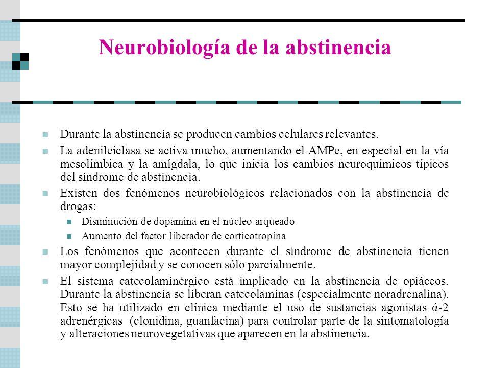 Neurobiología de la abstinencia