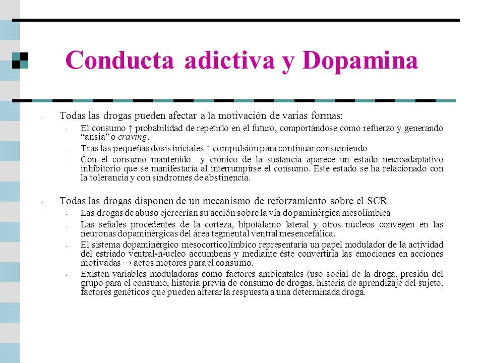 Conducta adictiva y Dopamina