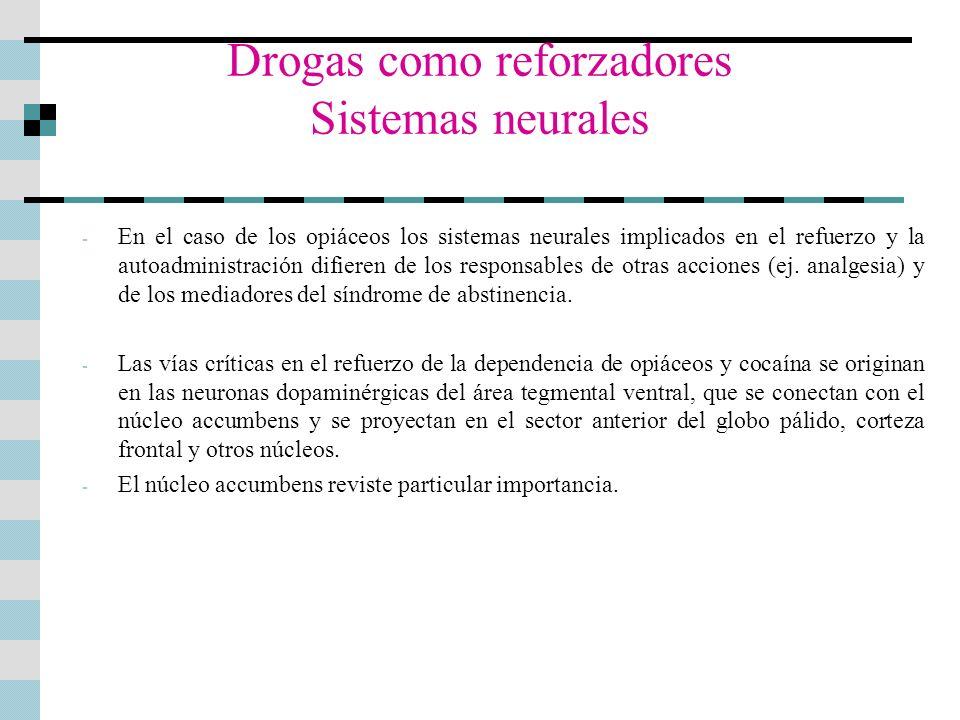 Drogas como reforzadores Sistemas neurales