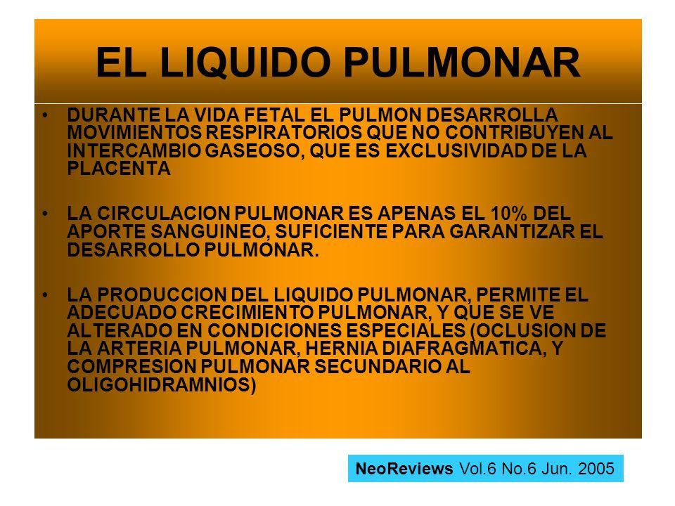 EL LIQUIDO PULMONAR