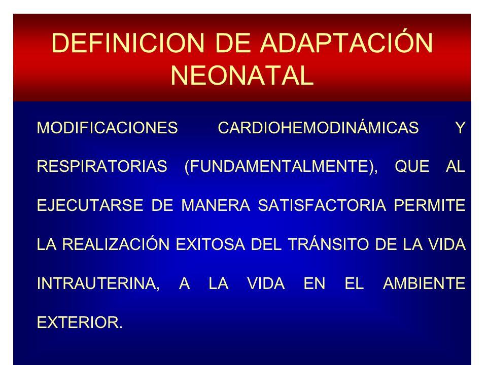 DEFINICION DE ADAPTACIÓN NEONATAL