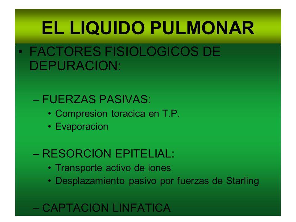 EL LIQUIDO PULMONAR FACTORES FISIOLOGICOS DE DEPURACION: