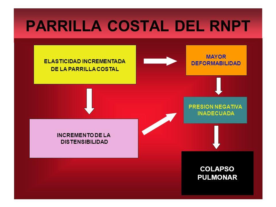 PARRILLA COSTAL DEL RNPT