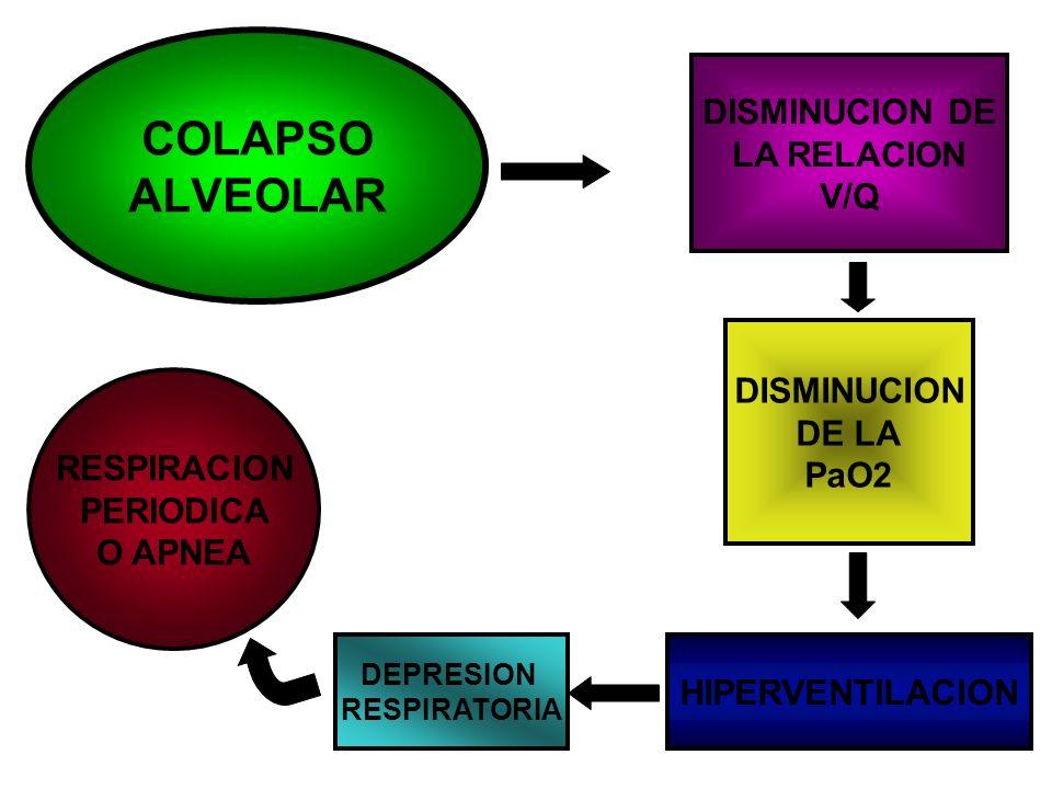 COLAPSO ALVEOLAR DISMINUCION DE LA RELACION V/Q DISMINUCION DE LA PaO2