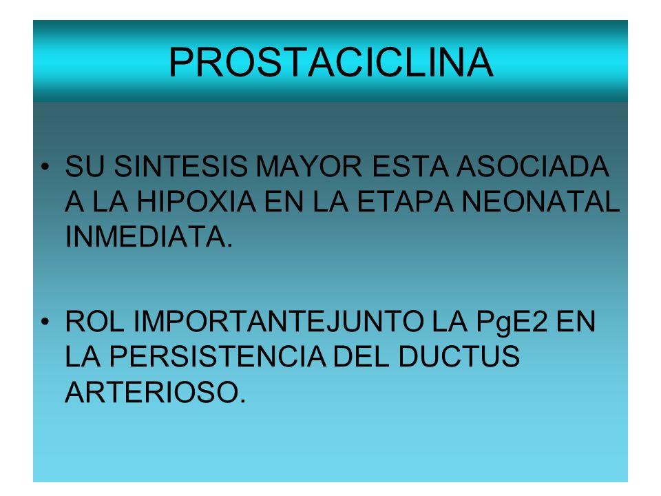 PROSTACICLINA SU SINTESIS MAYOR ESTA ASOCIADA A LA HIPOXIA EN LA ETAPA NEONATAL INMEDIATA.