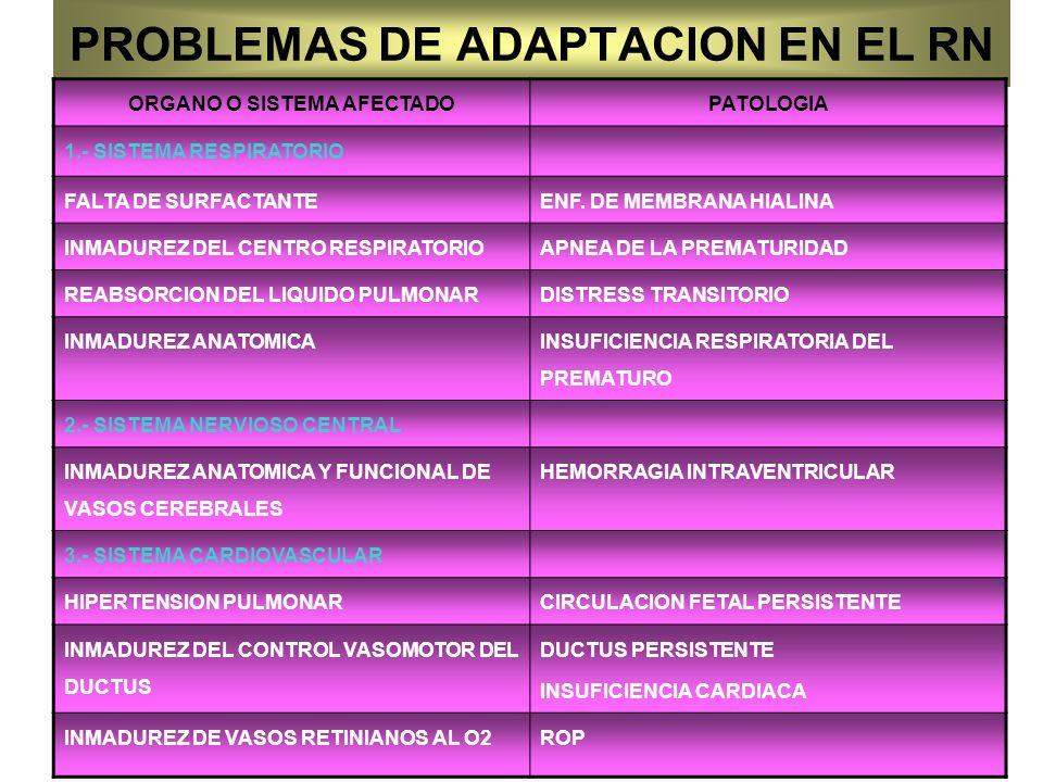 PROBLEMAS DE ADAPTACION EN EL RN
