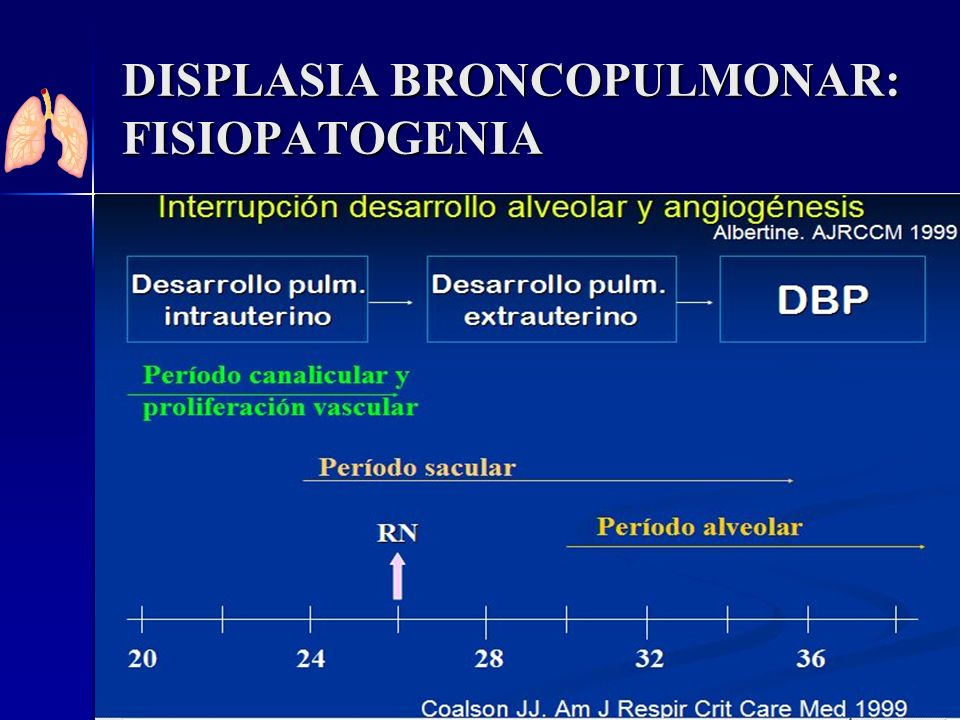 DISPLASIA BRONCOPULMONAR: FISIOPATOGENIA