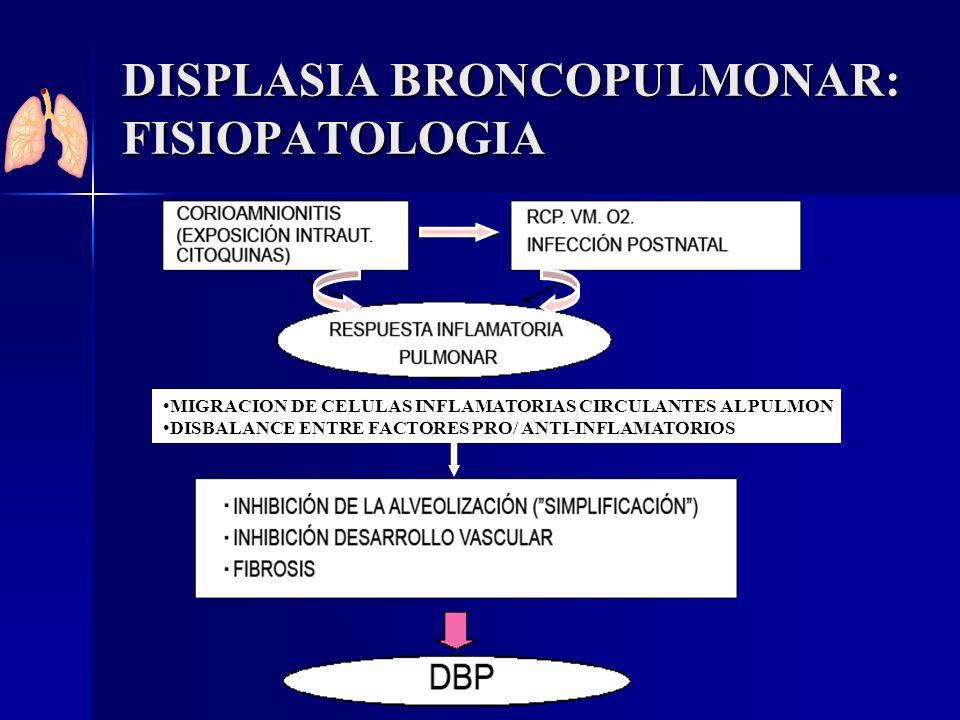 DISPLASIA BRONCOPULMONAR: FISIOPATOLOGIA