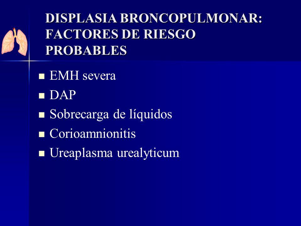 DISPLASIA BRONCOPULMONAR: FACTORES DE RIESGO PROBABLES