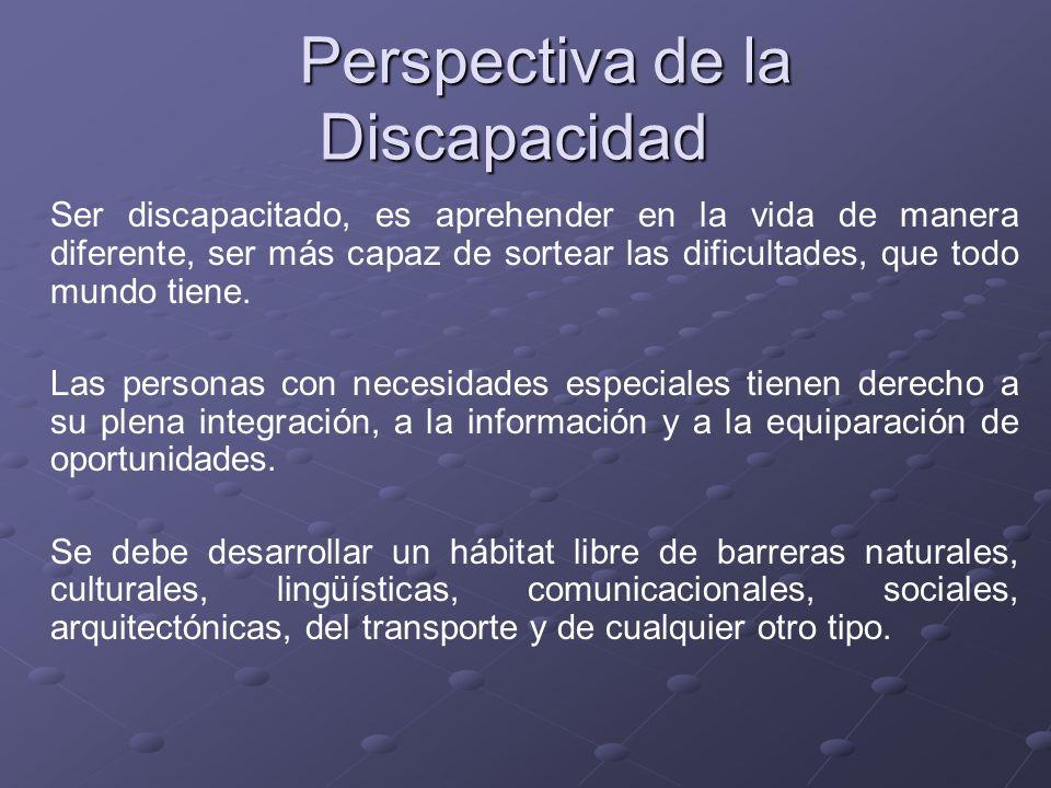 Perspectiva de la Discapacidad