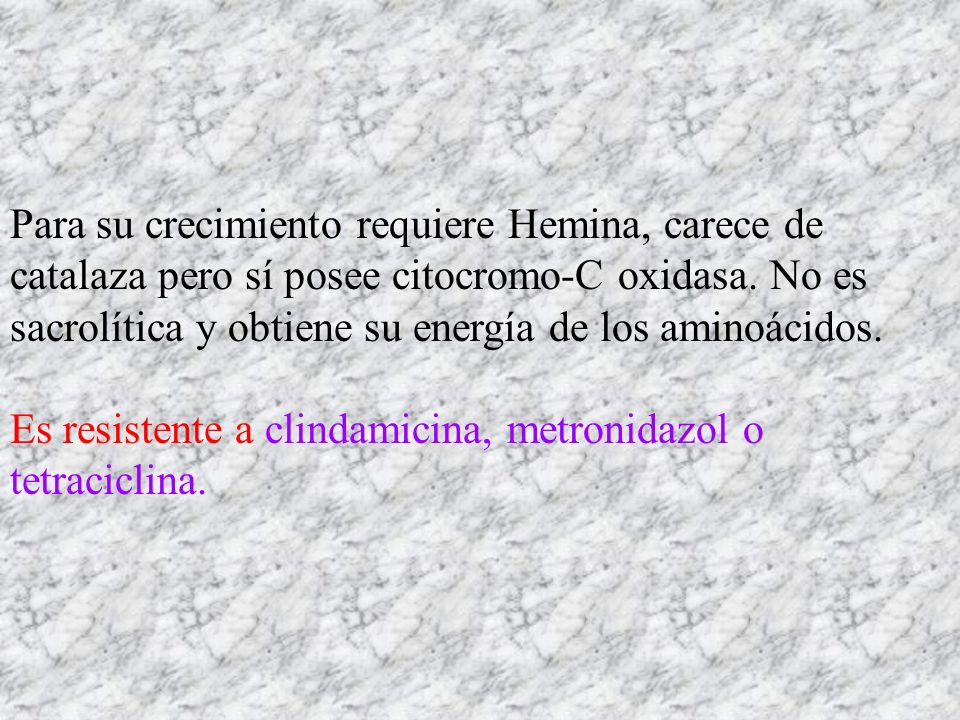Para su crecimiento requiere Hemina, carece de catalaza pero sí posee citocromo-C oxidasa. No es sacrolítica y obtiene su energía de los aminoácidos.