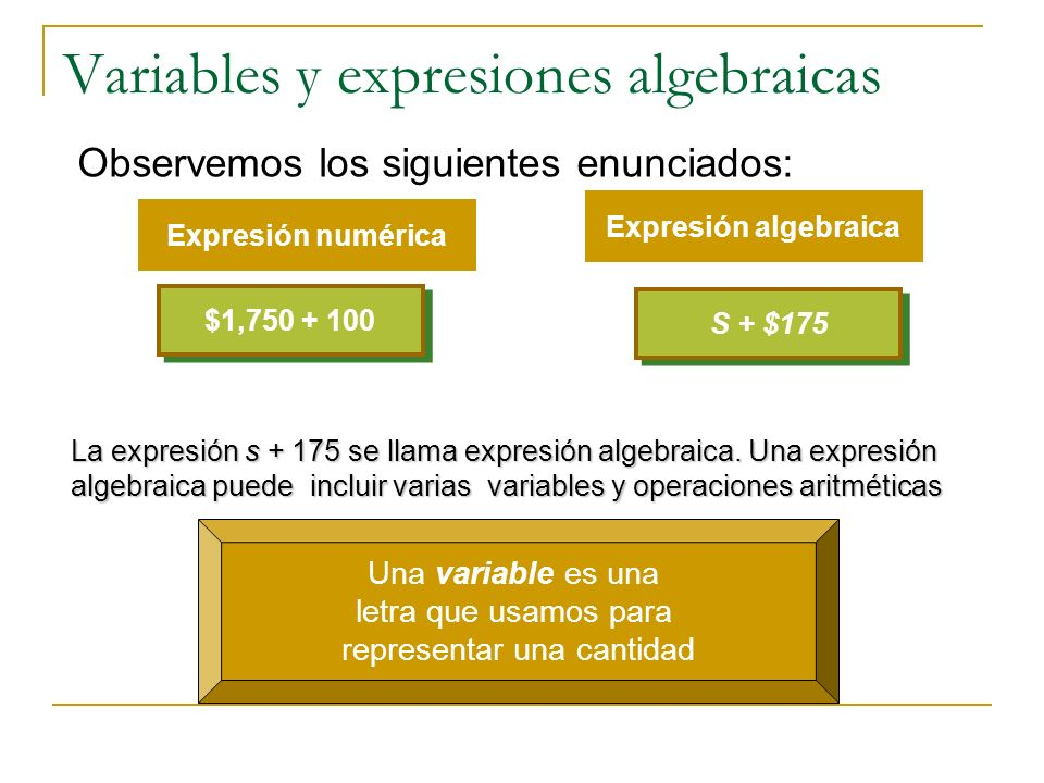 Variables y expresiones algebraicas