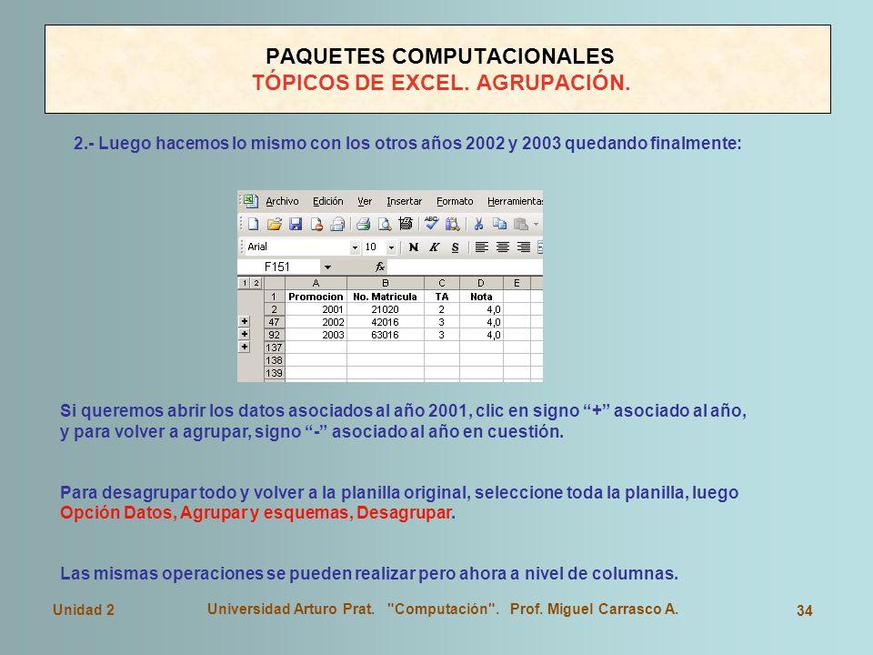 PAQUETES COMPUTACIONALES TÓPICOS DE EXCEL. AGRUPACIÓN.