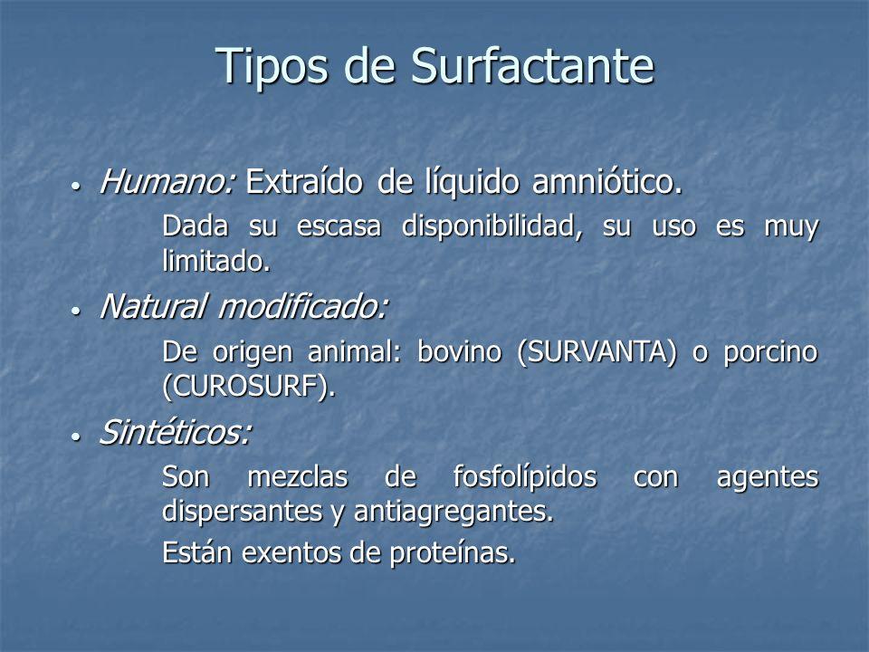 Tipos de Surfactante Humano: Extraído de líquido amniótico.