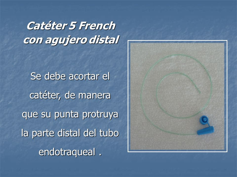 Catéter 5 French con agujero distal